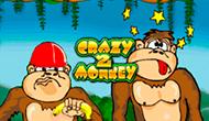 Игровой автомат Crazy Monkey 2